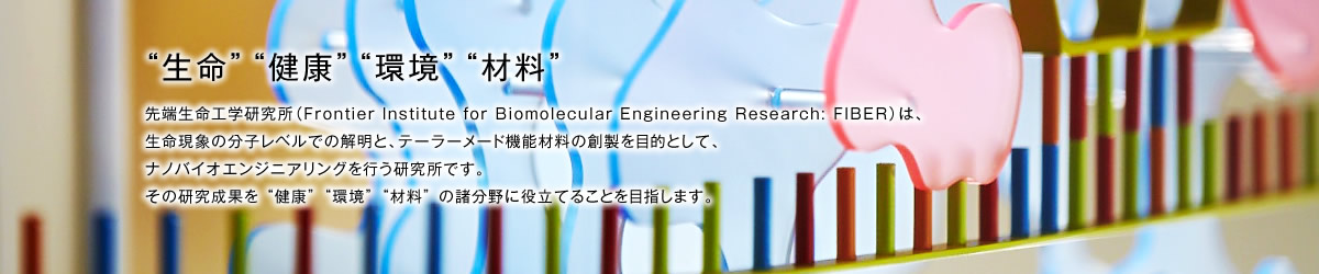 FIBER 甲南大学 先端生命工学研究所(Frontier Institute for Biomolecular Engineering Research: FIBER)